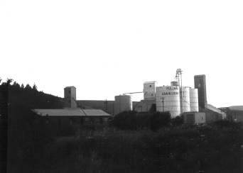 Grain silos, circa 1973 Photo: Molly Martin