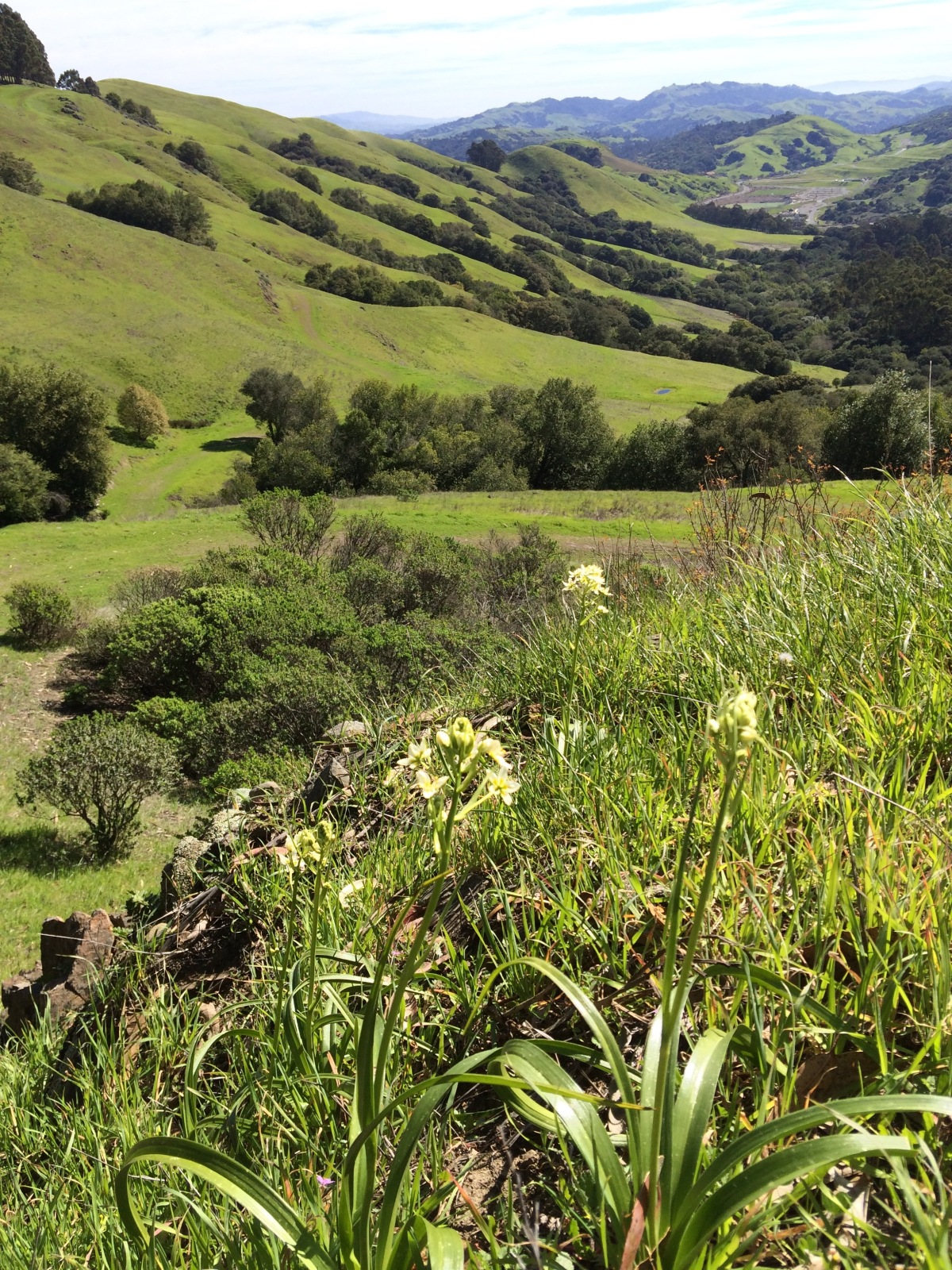 Hiking the EBMUD Watershed